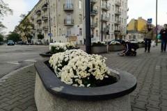 Sadzenie na 11 Listopada, fot. Porozumienie dla Pragi.